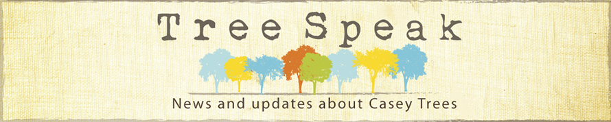 Tree Speak | Casey Trees
