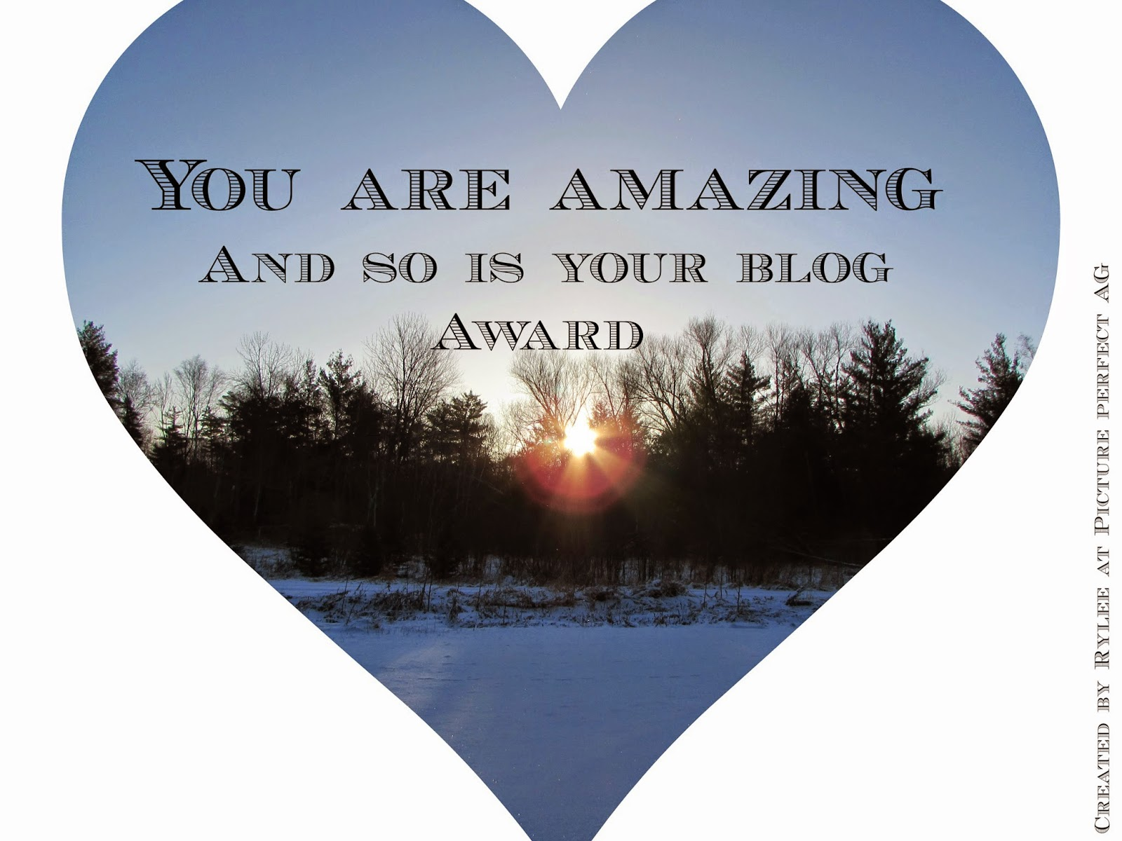 You Are Amazing and so is Your Blog Award