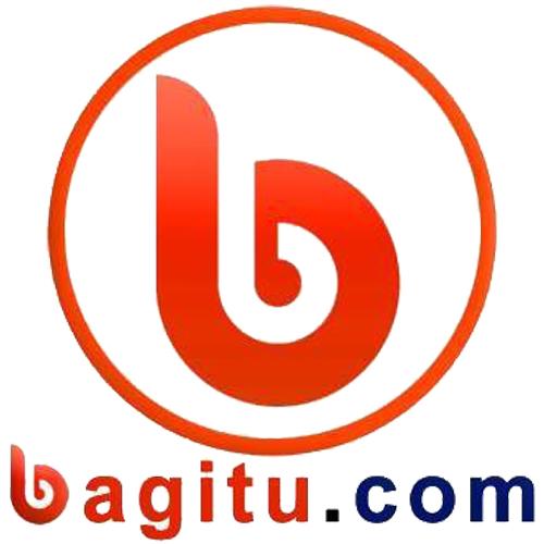 bagitu.com