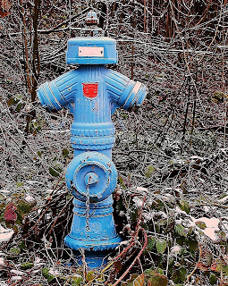 blue fire hydrant over in Europe