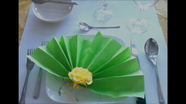 http://prettyneasy.com/blogs/how-to/13080741-pretty-n-easys-napkin-folding-series