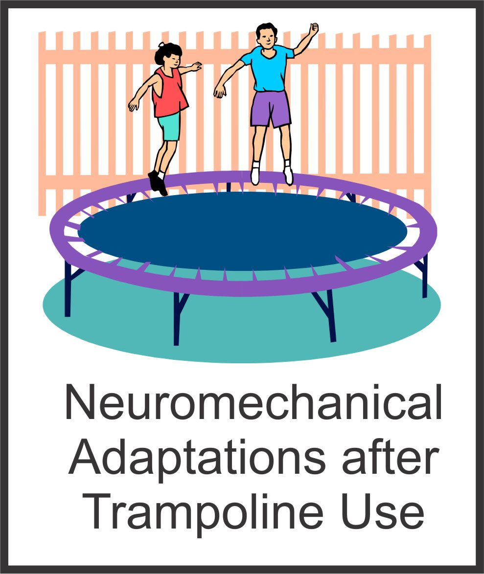 neuromechanical adaptations following trampoline use your therapy source. Black Bedroom Furniture Sets. Home Design Ideas