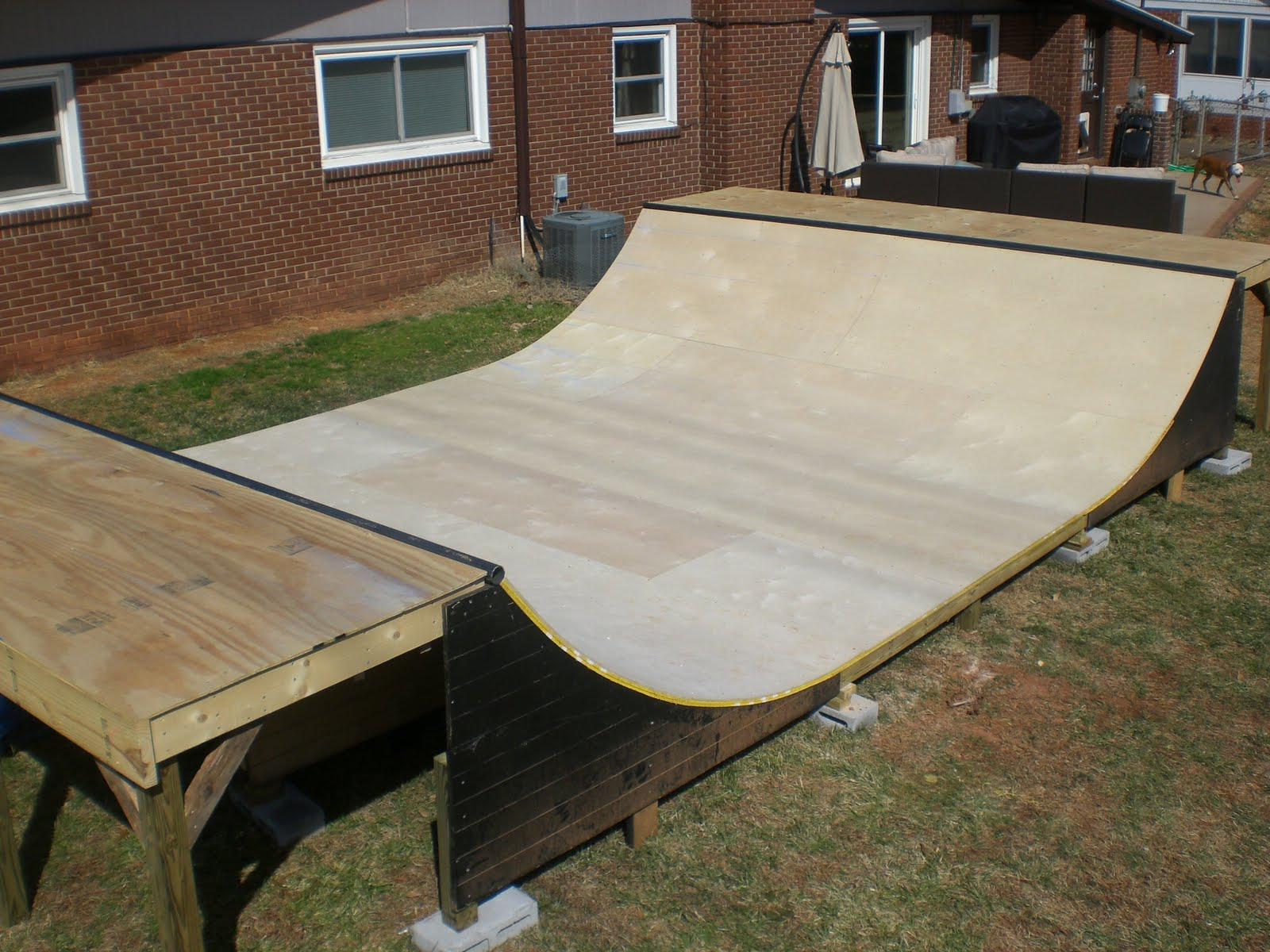 Back Yard Halfpipe Related Keywords & Suggestions  Back Yard Halfpipe