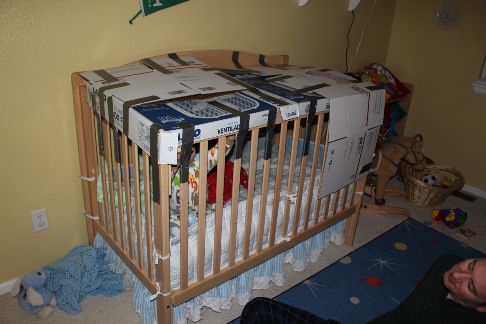 How To Keep The Cat Out Of The Crib