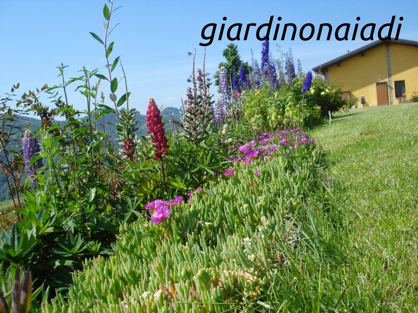 Il giardino delle naiadi: lo stile: il giardino di campagna