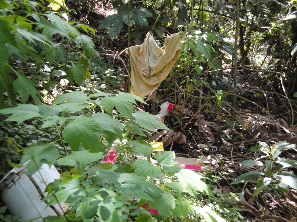 Lixo jogado por moradores na localidade da Est Rincão do Vovô -Posse Teresópolis RJ