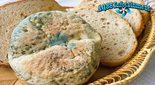 Banyak makanan terbuang karena terlalu lama disimpan. Selain aroma dan rasanya tidak enak juga karena berjamur. Karenanya makanan ini biasanya dibuang.