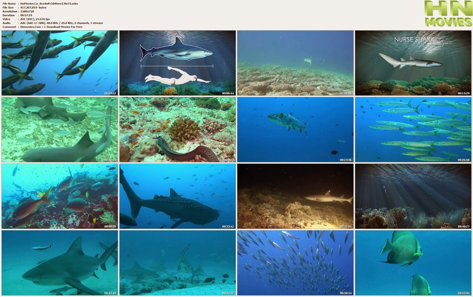movie screenshot of Ocean Predators fdmovie.com