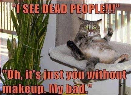 I see dead people! Of it's just you without makeup. My bad. Cat meme
