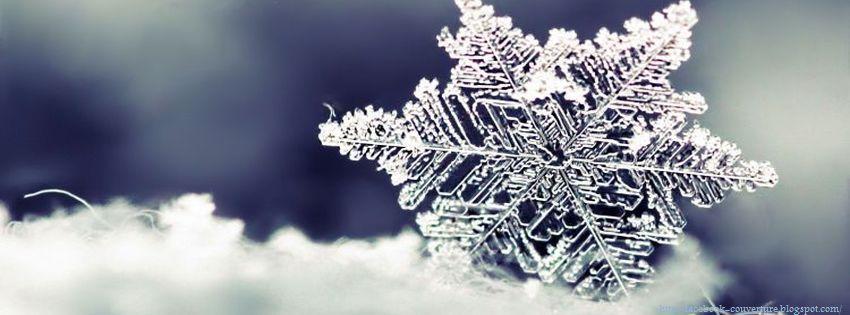 http://4.bp.blogspot.com/-ujFJik_c0oA/UNwWVIAxr_I/AAAAAAAAGfc/bwnrxJuBoIo/s1600/couverture-facebook-saison-hiver_02.jpg