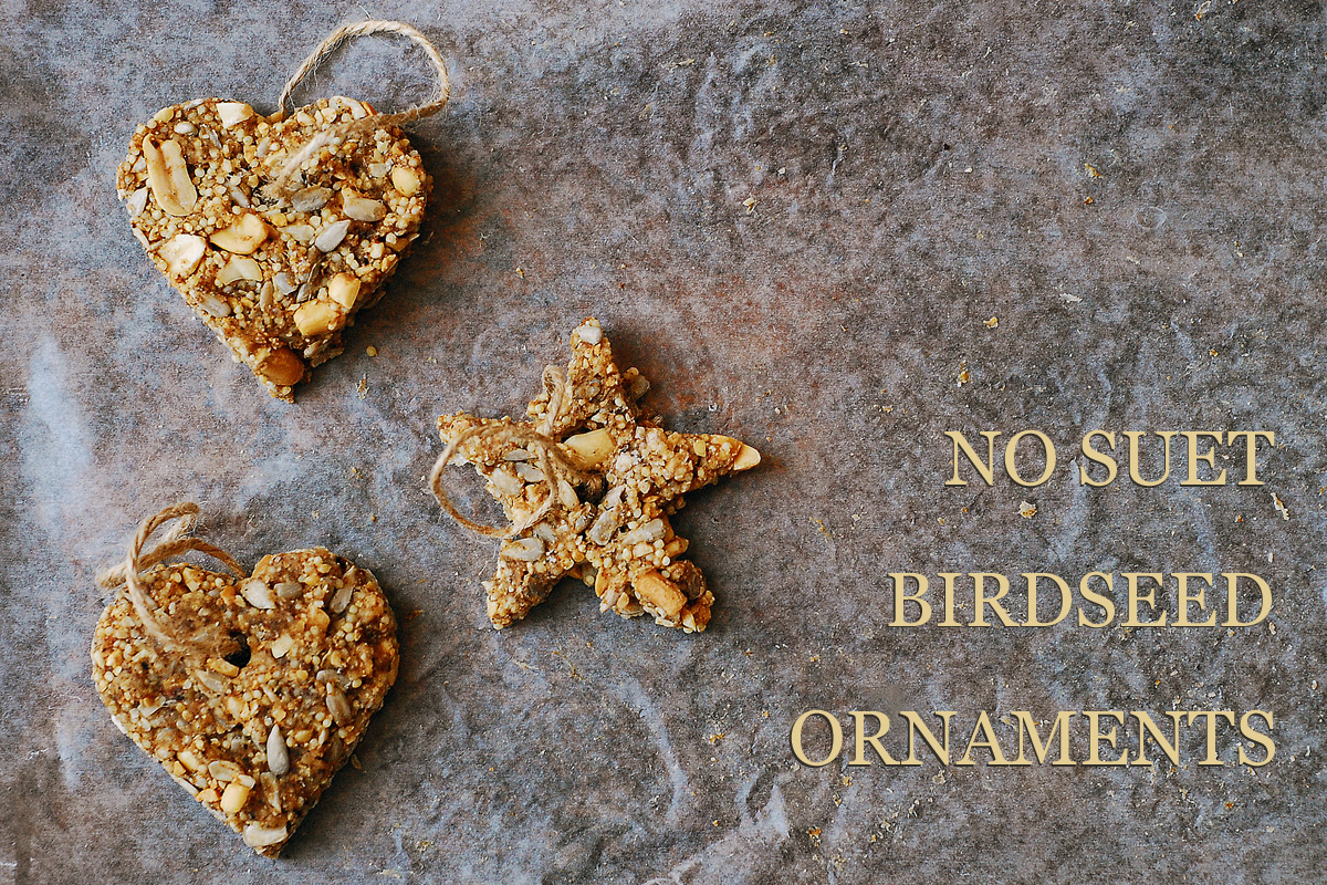 No Suet Birdseed Ornaments