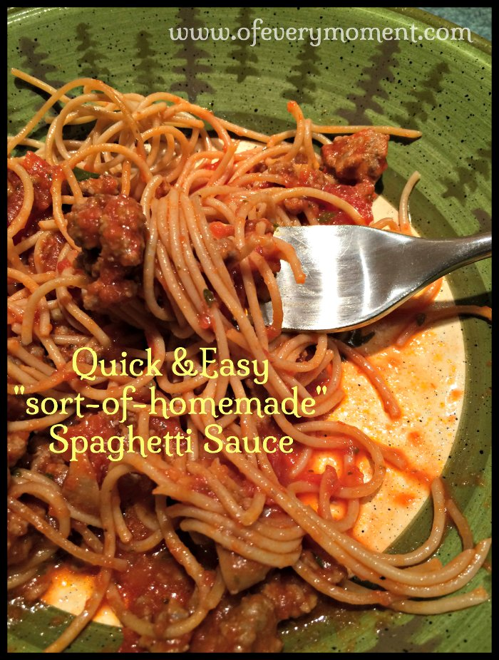 my easy spaghetti sauce recipe