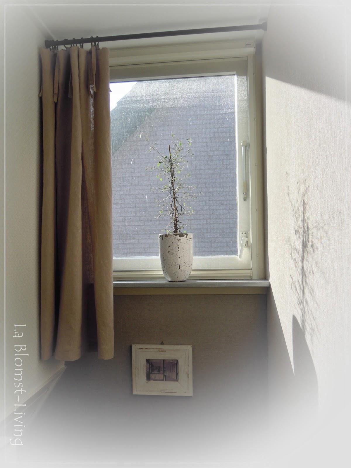 La Blomst-Living: Gordijn en plant