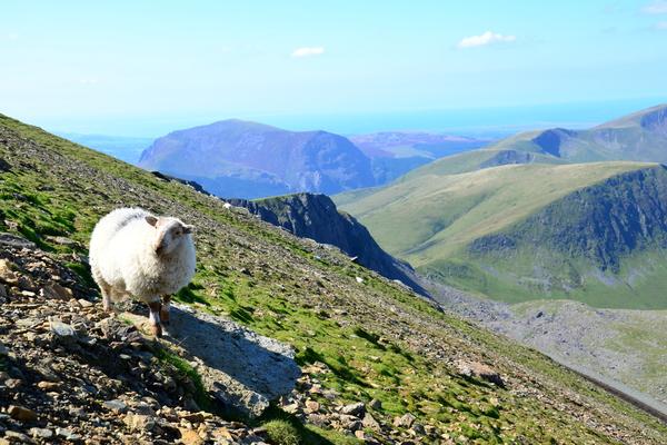 Visitare la Snowdonia, Galles