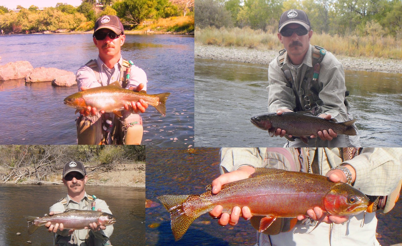 arkansas river tailwater fly fishing report september 2012