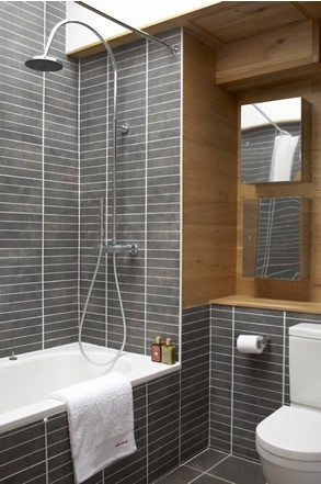 Different Shades Of Gray to da loos: grey bathrooms are they a good idea?