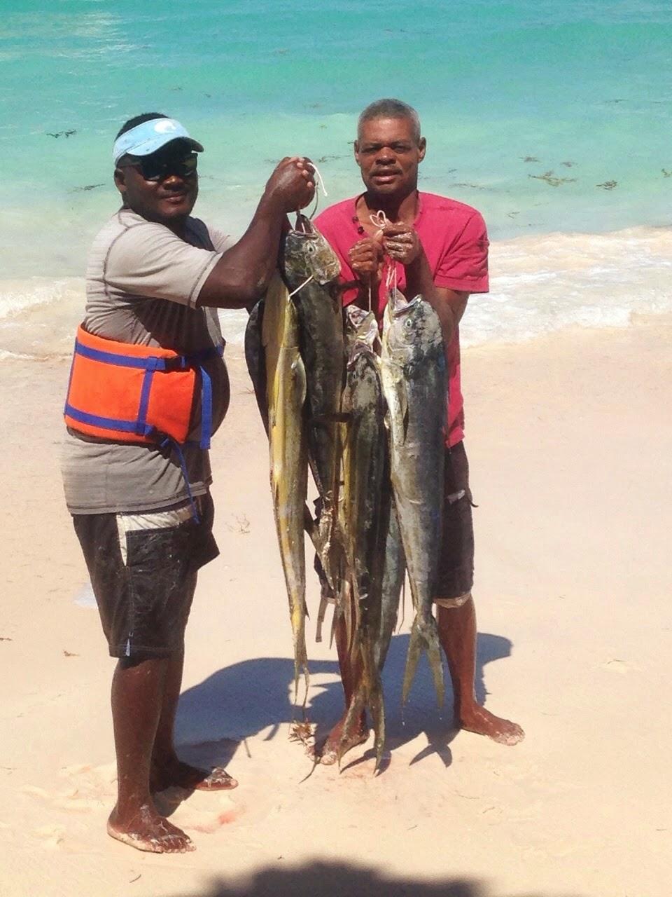 Punta cana fishing more dorados bites in punta cana for Punta cana fishing charters
