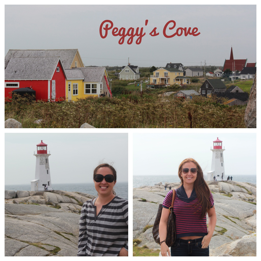 Peggy S Cove Dog Friendly