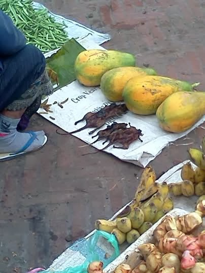 Roasted rats and papayas right next to each other in the local market at Luang Prabang.