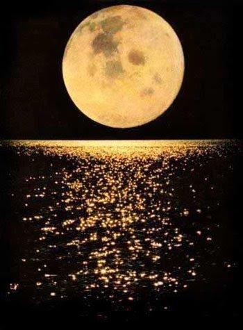 Passeios Noturnos
