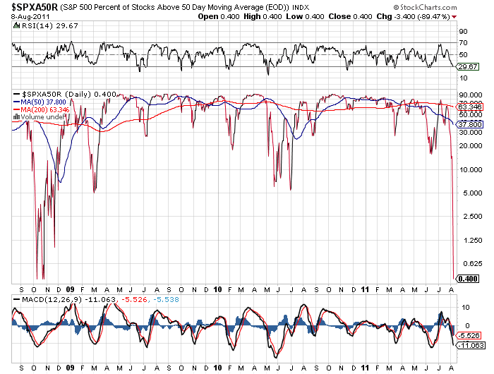Charting the Stock Market Crash of 2011 | Black Swan Insights