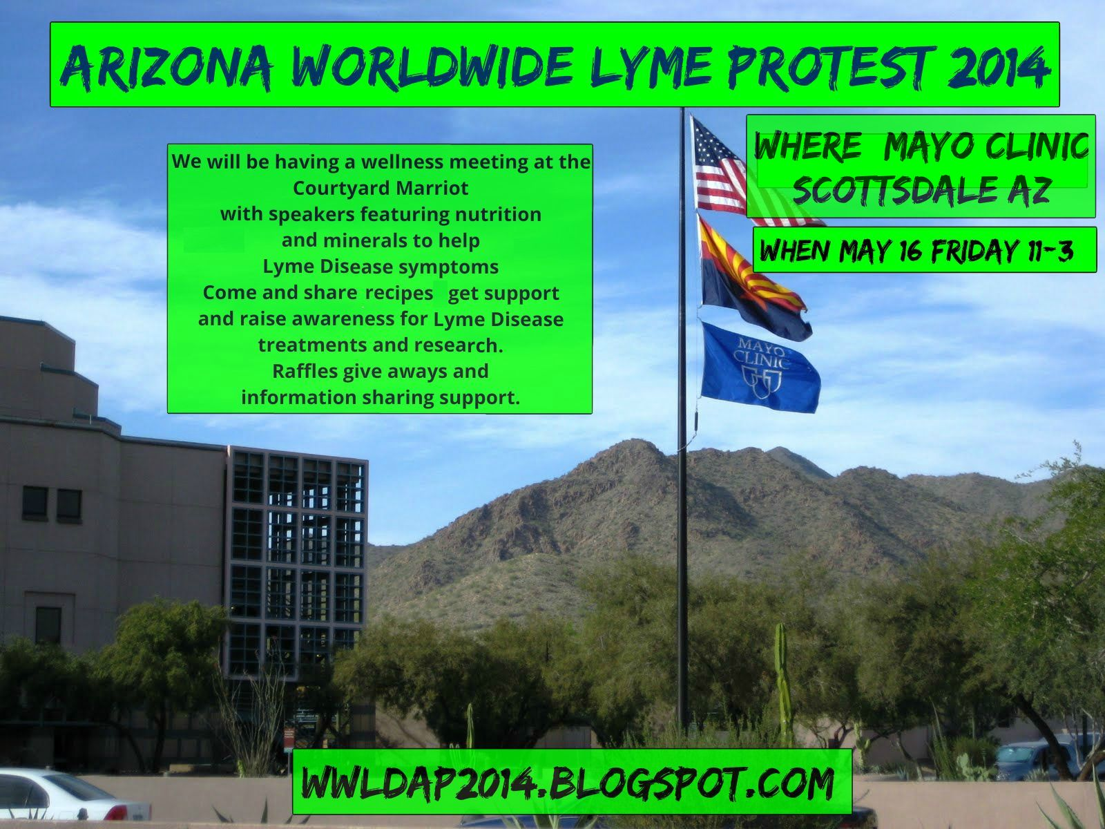 Worldwide Lyme Disease Awareness Protest 2014 Arizona39s