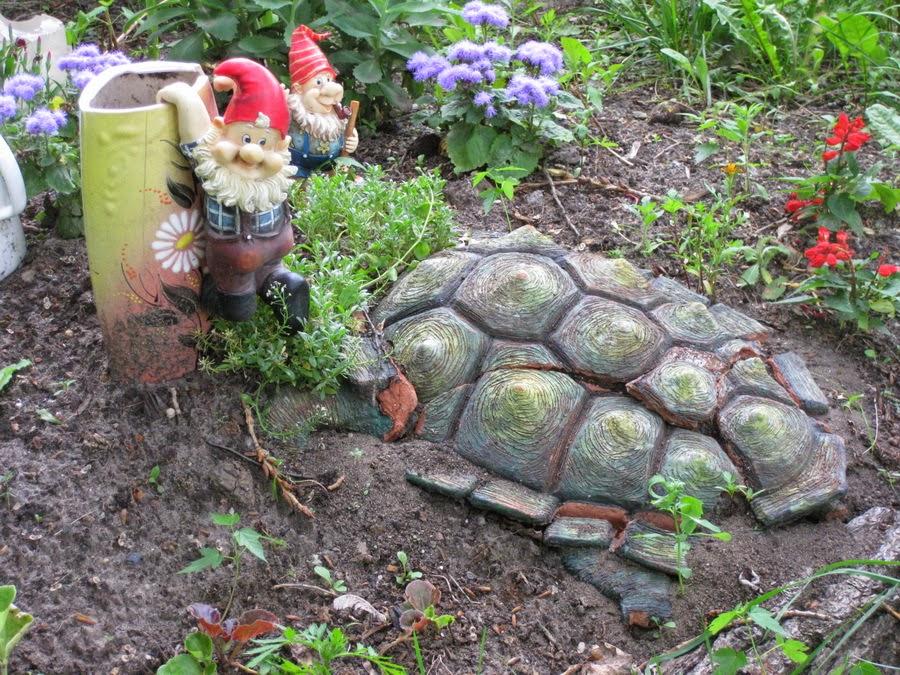 черепаха и гномы