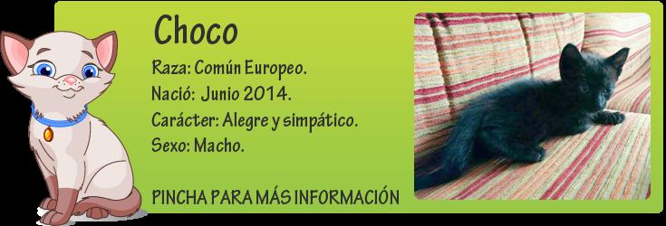 http://mirada-animal-toledo.blogspot.com.es/2014/08/choco-encontrado-con-las-patas.html