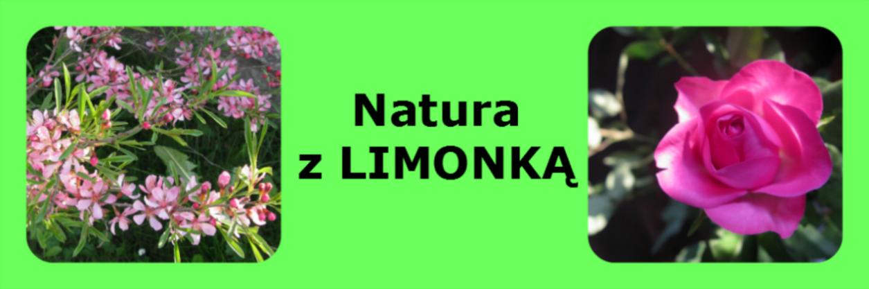 Natura z LIMONKĄ