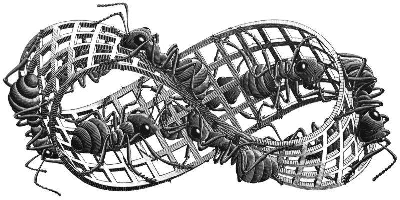 Jugando con bordes: caminito de hormigas