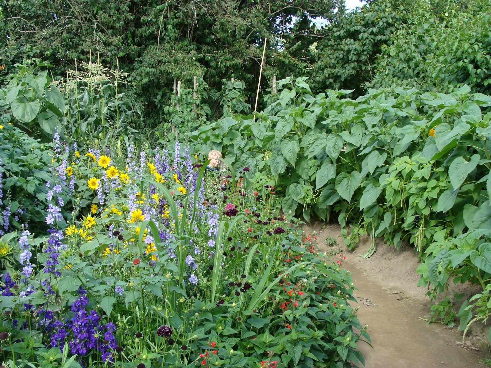 Kungsbacka trädgårdsdesign: pastellandskap à la provence