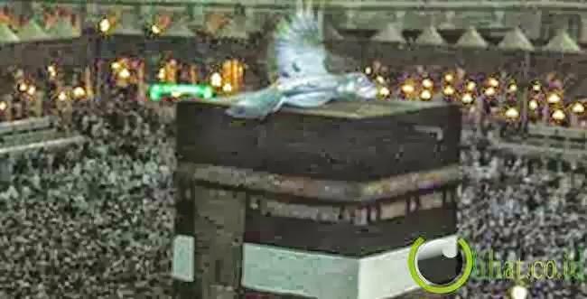 Fakta Liar: 5 Penampakan Malaikat yang Pernah Menghebohkan ...