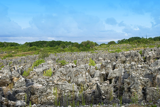 Phosphate mining has created a lunar landscape on Nauru