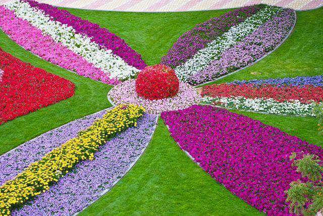 من اجمل حدائق العالم : حديقة العين بارادايس من الإمارات العربية DSC_6015.jpg