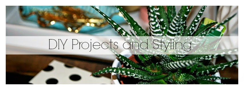 DIY Projects and Stylilng