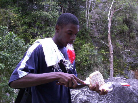Bag Juice In Jamaica6
