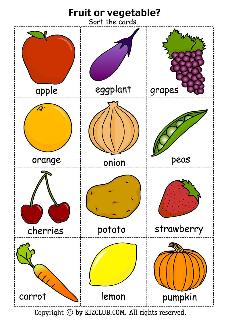 It's just a graphic of Challenger Printable Pictures of Vegetables