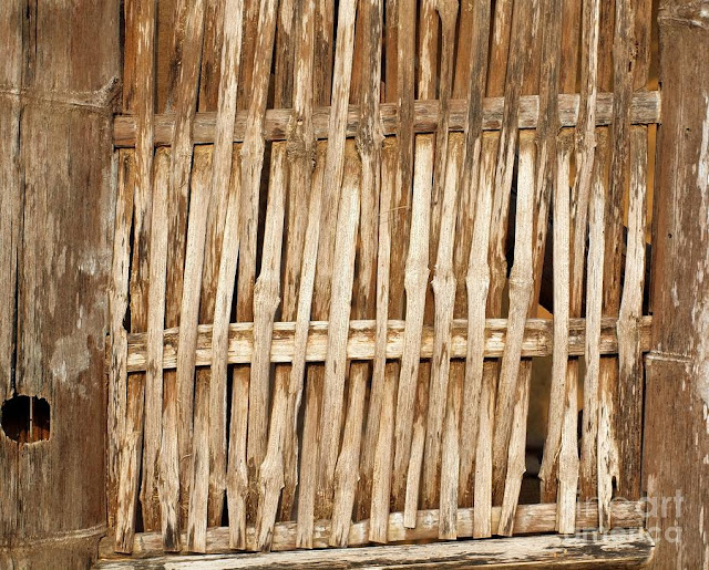 Bamboo Made3