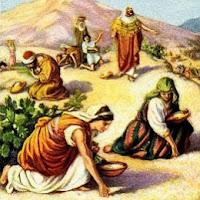 Israel Gathering Manna