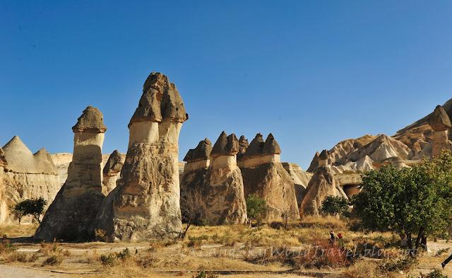 土耳其, turkey, 奇石林, Cappadocia, 仙境煙窗區, Fairy Chimney