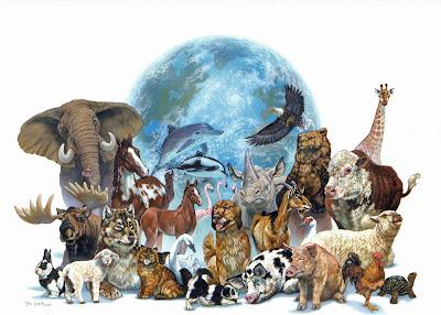 http://4.bp.blogspot.com/-un-7iWYtHl0/UScyIgH4NMI/AAAAAAAAHgg/jgfTW_eI9es/s1600/Tierreich-Wunder-der-Natur.jpg