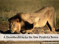 A Desobediência De Um Profeta Novo