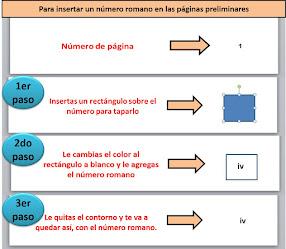 Para insertar números romanos en las páginas preliminares