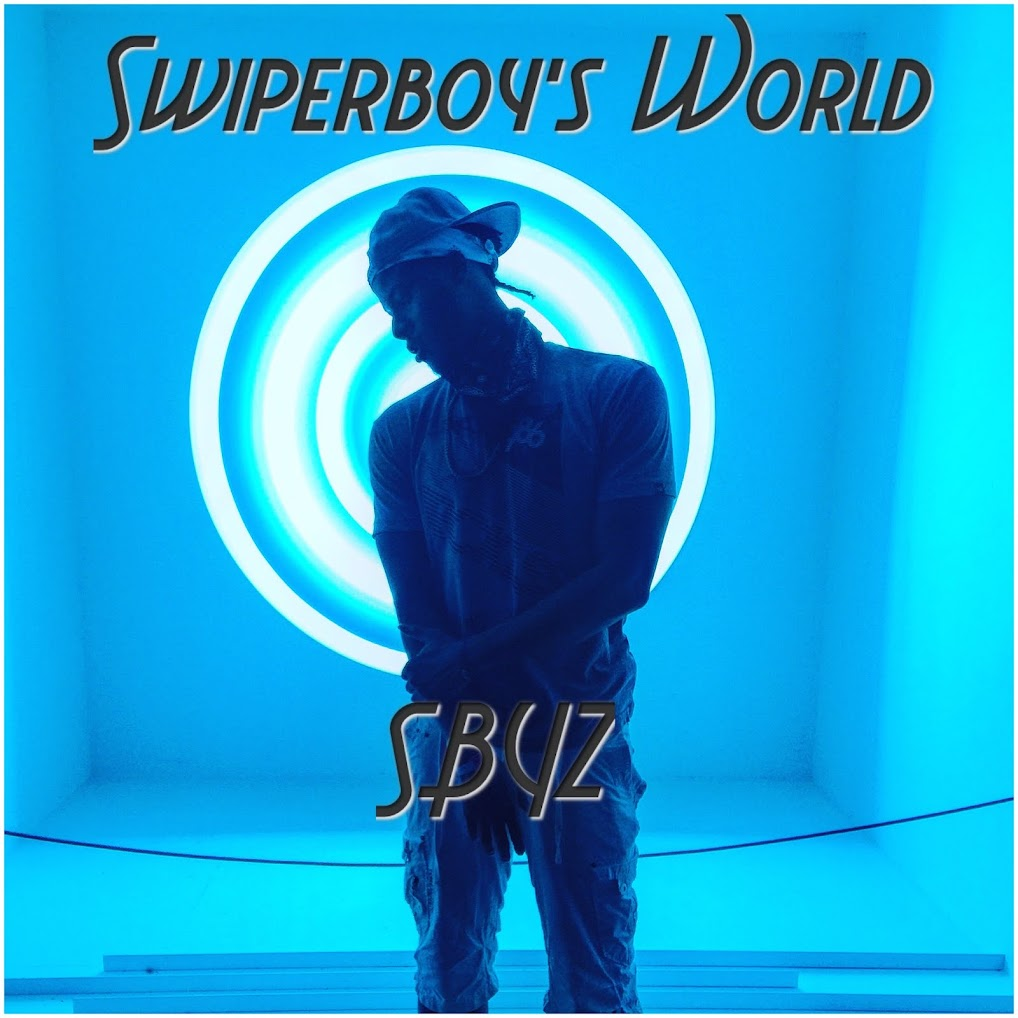 Swiperboy's World