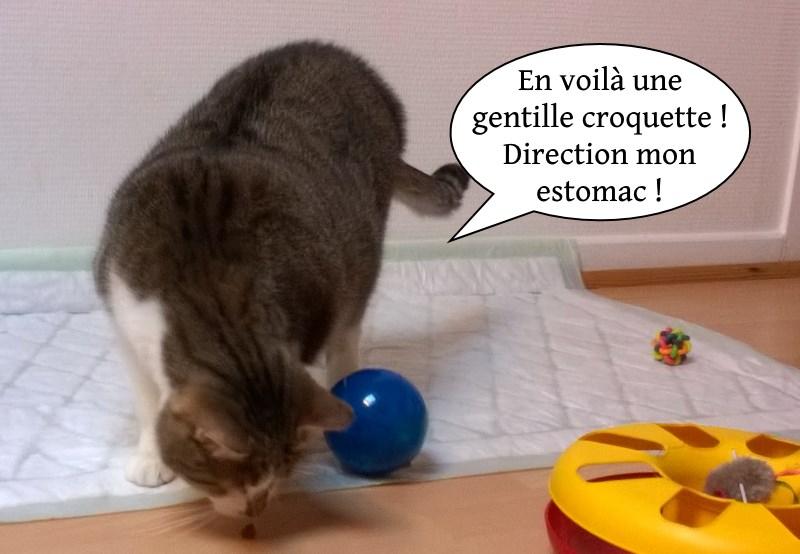 Balles dans la chatte