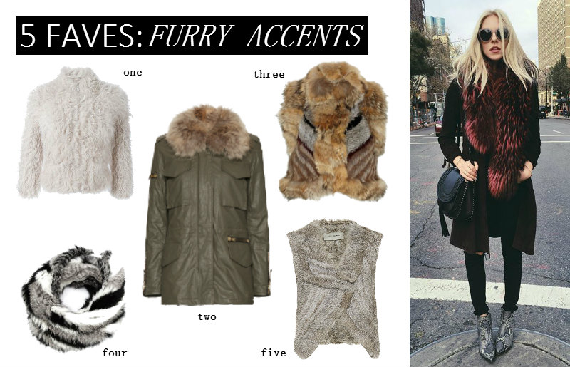 Five Faves: Furry Accents by The Savvy Spoon