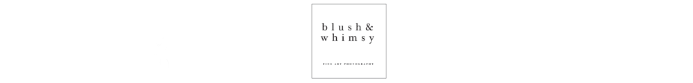 Destination Wedding Photographer | blush and whimsy |  Wedding Photographer | Spain | Italy | France