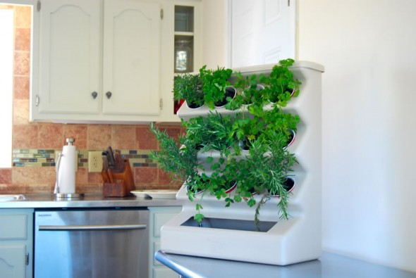 Big city sustainability better urban homes with gardens for Kitchen herb garden