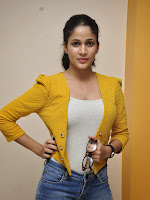 Lavanya Tripathi Stylish Photo shoot gallery-cover-photo