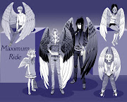 Maximum Ride; My Favorite!
